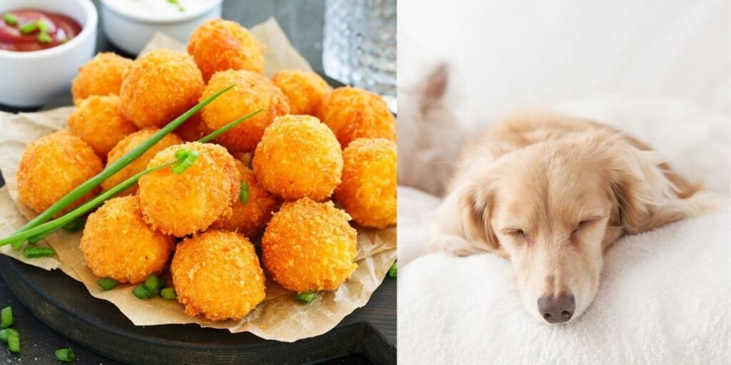 can dogs eat cheese balls