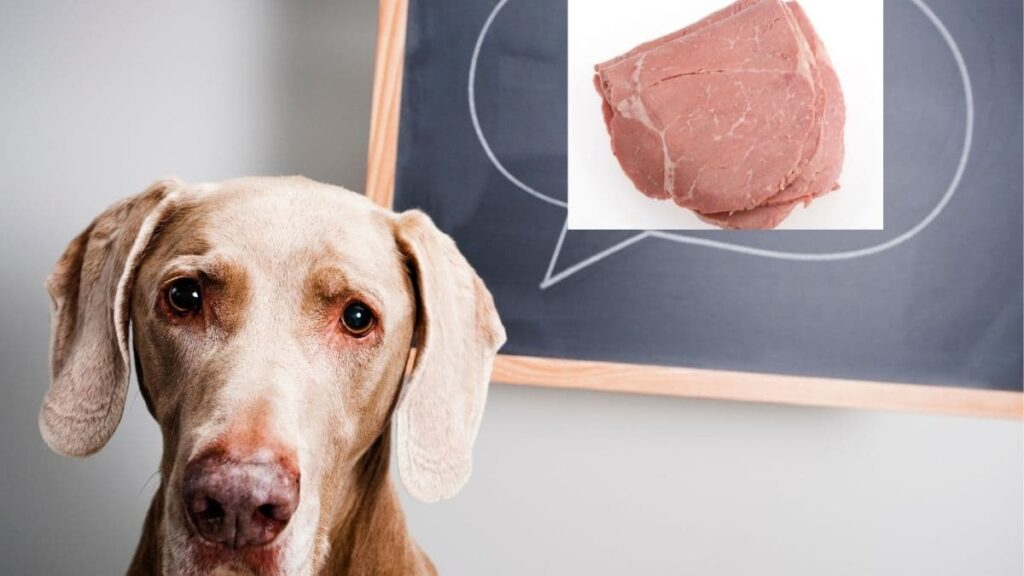 is lunch meat bad for dogs
