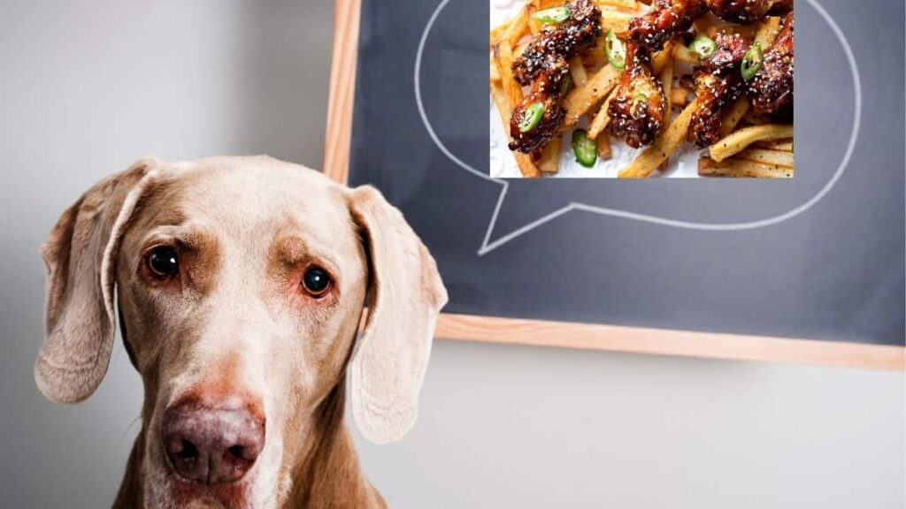 can dogs eat sesame chicken