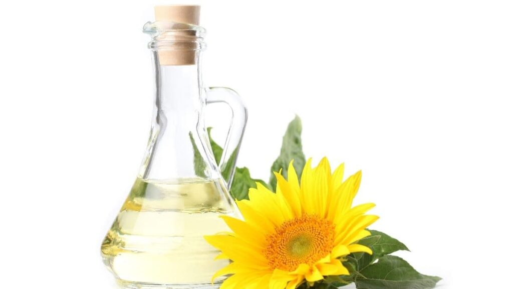 can dogs eat sunflower oil